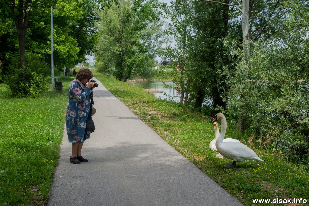 graba-sisak_2020_15