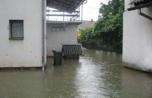 poplave sisak (3)