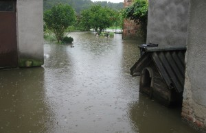 poplave sisak (4)