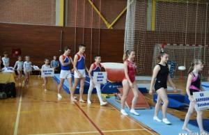 Sisački gimnatsički vikend 2015.