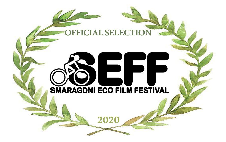 Selektirani filmovi 13. izdanja SEFF-a